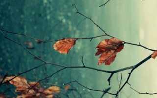 Михаил Лермонтов стихотворение «Молитва» (Я, матерь божия, ныне с молитвою)