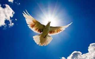 Молитвы, которые помогут в защите от приворота: виды и правила чтения