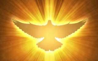 Молитва «ад-духа». Как совершать утренний (духа) намаз